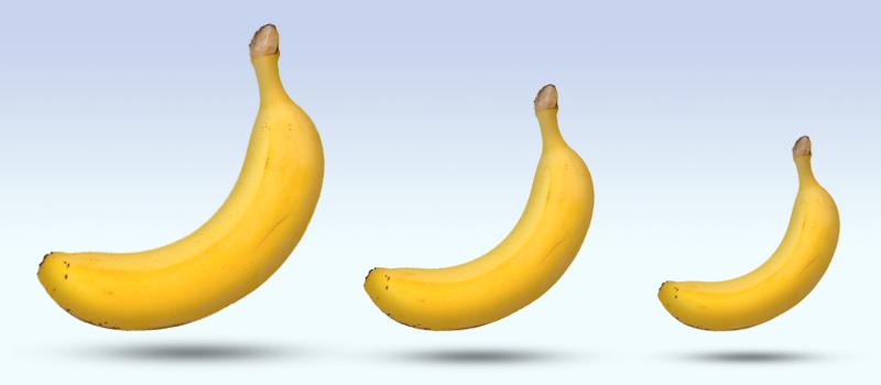 storleken på penis